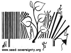 seedsov